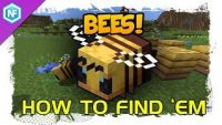 how-to-find-bees-minecraft-survival-tutorial.jpg