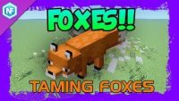 how-to-tame-foxes-in-survival-minecraft.jpg