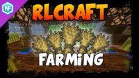 rl-craft-farming-guide.jpg